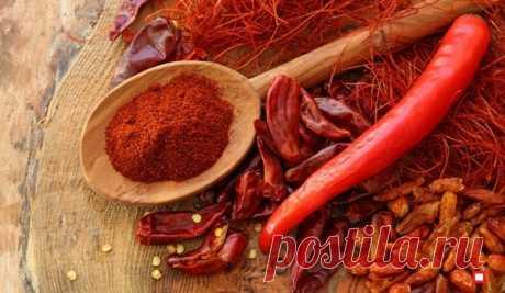 Красный молотый перец – эффективное средство для борьбы с вредителями | Твоя Дача | Яндекс Дзен