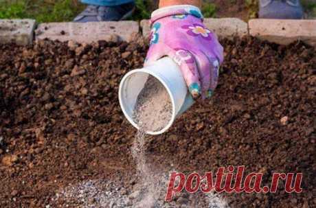 Древесная зола для грядок Древесная зола как удобрение используется уже давно. Это вещество богато различными микроэлементами, необходимыми для роста растений. Давайте разберемся, как правильно применять пепел на участке. Древ...
