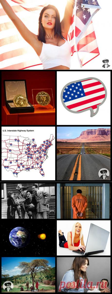 12 фактов о США, которые вы могли не знать | Американ Бой | Яндекс Дзен