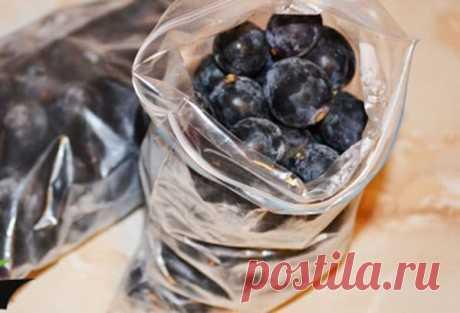 Как заморозить виноград на зиму: правила и рецепты