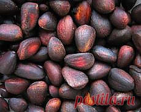 Как чистить кедровые орехи?