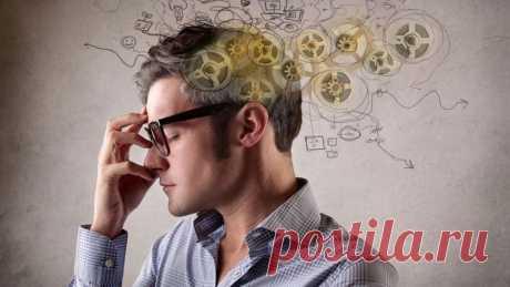 Чем более человек интеллектуален, тем больше у него в волосах меди и цинка.