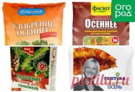 4 вида минеральных удобрений, которые всегда нужно иметь под рукой | Дела огородные (Огород.ru)