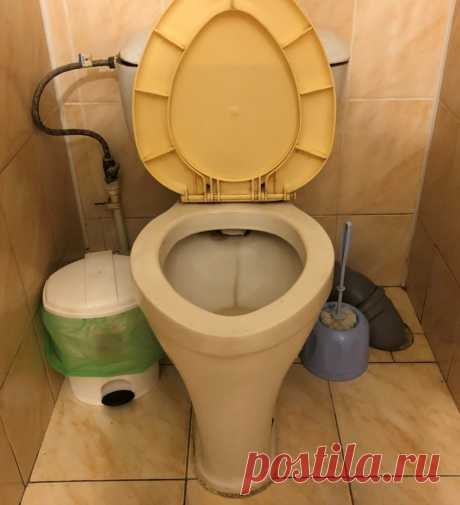 О японских туалетах