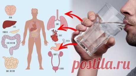 Почему лучше пить воду тёплой - Народная медицина - медиаплатформа МирТесен Знаешь ли ты, что холодная вода способна спровоцировать приступ мигрени? В то время как благодаря тёплой улучшается наше пищеварение, а наш организм лучше очищается от токсинов. Знаешь ли ты, что холодная вода способна спровоцировать приступ мигрени? В то время как благодаря тёплой улучшается наше