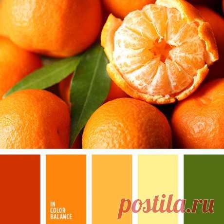 Цветовая политра для творчества.