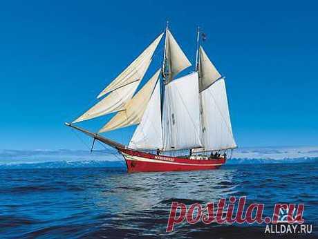 Яхта » ALLDAY
