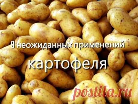 9 невероятных способов полезного применения картошки. — Полезные советы