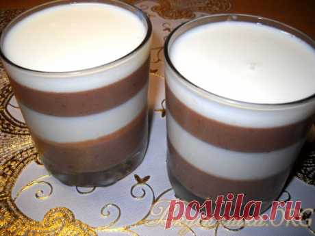 Sour cream and cocoa jelly. The recipe with a photo