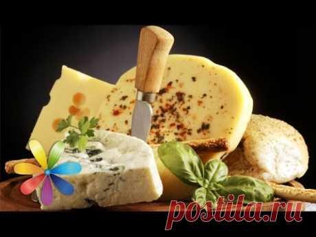 Делаем нежнейший яичный сыр - Все буде добре - Выпуск 608 - 28.05.15