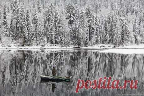 Река Бия, Алтай. Автор фото — Антон Петрусь: nat-geo.ru/photo/user/50290/