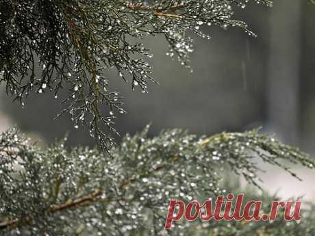 Велесова ночь с 31 октября на 1 ноября: традиции, приметы и обряды На рубеже октября и ноября отмечается таинственный праздник. И это не Хэллоуин, как мы привыкли думать. Или, во всяком случае, не только он: подобные праздники справляли многие народы.