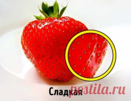 How to choose strawberry: 5 secrets of a right choice - the Typical Culinary specialist