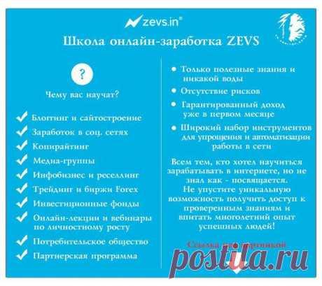 https://pro-zevs.ru/?ref=87238