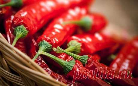 6 facts about advantage of spicy food