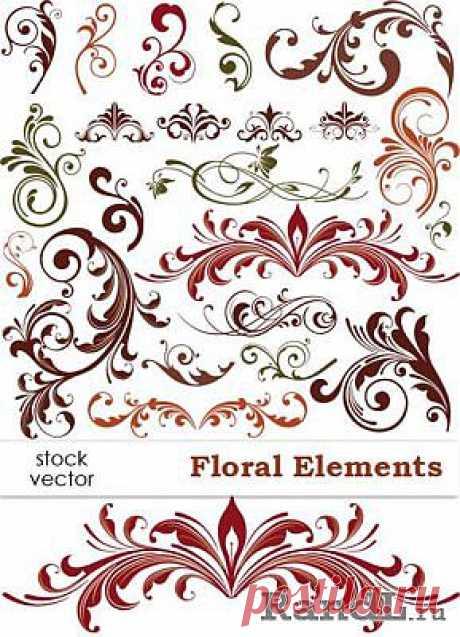 Vector - Floral Elements   Растительные элементы, вектор » RandL.ru - Все о графике, photoshop и дизайне. Скачать бесплатно photoshop, фото, картинки, обои, рисунки, иконки, клипарты, шаблоны.