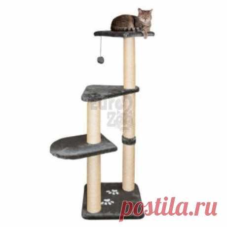 """Товары для кошек - купить в интернет-магазине """"EuroZoo"""""""