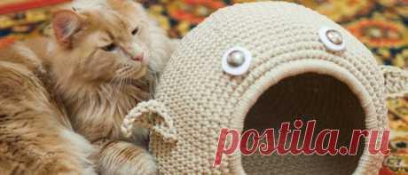 Вязаный домик для кошки: как сделать своими руками