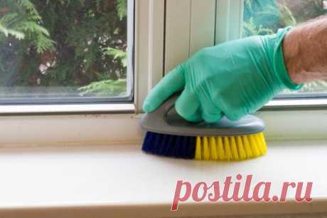 Чем мыть пластиковые окна и подоконники :: Полезные советы :: Полезные советы