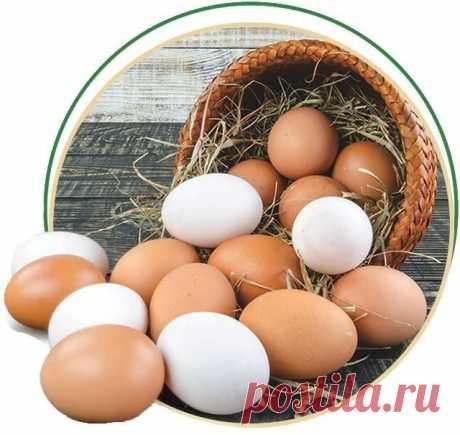 ЕСЛИ ВЫ ЗАБОЛЕЛИ. ВОЗЬМИТЕ КУРИНОЕ ЯЙЦО И ПРИГОТОВЬТЕ ЛЕКАРСТВО   О курином яйце сказано довольно много. Но оно таит в себе еще много секретов. Из куриного яйца, оказывается, можно приготовить много лекарств в домашних условиях.    1. Средство от кашля.  Перемешать 2 ст. ложки качественного сливочного масла, 2 свежих яичных куриных желтка, 1 ч. ложку пшеничной муки и 2 ч. ложки натурального мёда. Принимайте внутрь по 1 ч. ложке 3-4 раза в день.  2. От термических ожогов.  ...