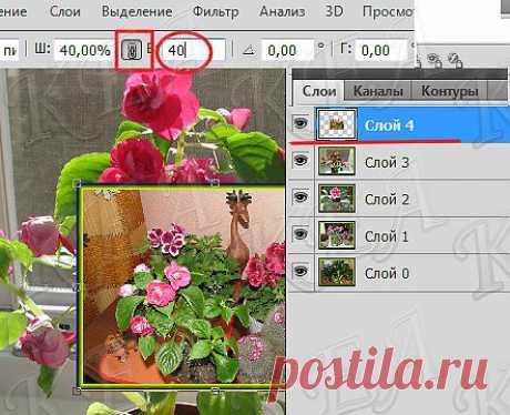 Вальс цветов-урок фотошопа.
