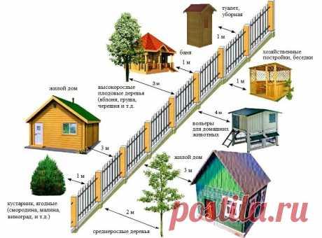 Кому принадлежит забор между соседями? | 6 соток