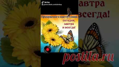 ВСЕМ СОЛНЫШКА В ДУШЕ И ПРЕКРАСНОГО НАСТРОЕНИЯ!!!... #прекрасногонастроения Музыкальная видео - открытка.