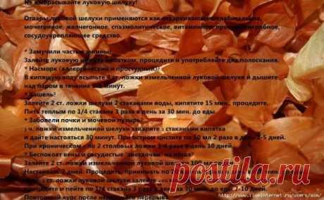 Не выбрасывайте луковую шелуху! Отвары луковой шелухи применяются как отхаркивающее, слабительное, мочегонное, желчегонное, спазмолитическое, витаминное, противомикробное, сосудоукрепляющее средство. * Замучили частые ангины? Залейте луковую шелуху кипятком, процедите и употребляйте для полоскания. * Насморк (аллергический и простудный)? В кипящую воду всыпьте 4 ст. ложки измельченной луковой шелухи и дышите над паром в течение 3-5 минут. * Кашель? Залейте 2 ст. ложки шелу...