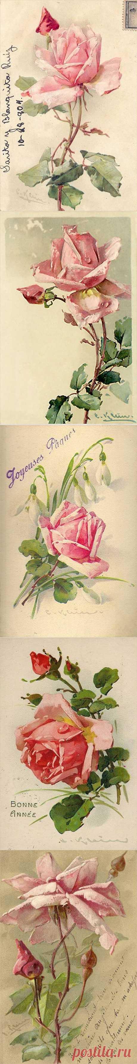 Розовая мечта. Старинные открытки. Ч - 1..
