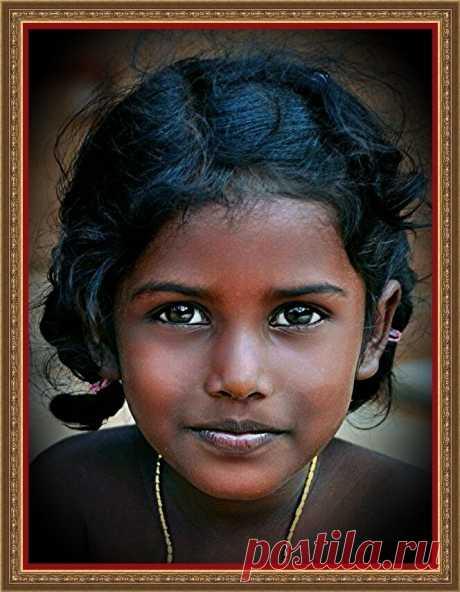 Древние дравиды утверждали, что пришли в Индию из Лемурии… | ШКОЛА - ДОМА | Яндекс Дзен