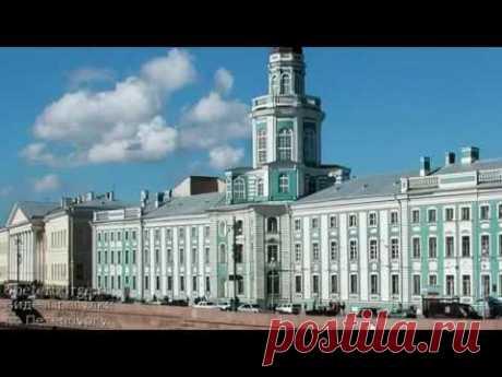 Создание Кунсткамеры – первого российского музея