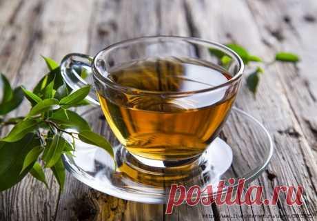 Чай с корицей и лавровым листом чудесное средство для похудения - стоит попробовать!