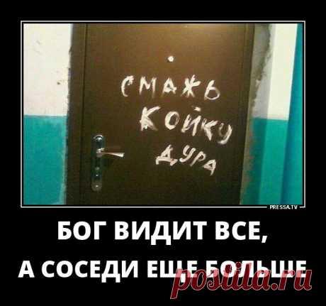 Актуальные и смешные Демотиваторы 31-10-2018 98231 . Чёрт побери