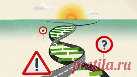 Генетика или окружающая среда? Учёные узнали, что на самом деле становится причиной болезней людей - Вести.Наука