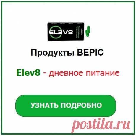 ОБУЧЕНИЕ | Компания Bepic