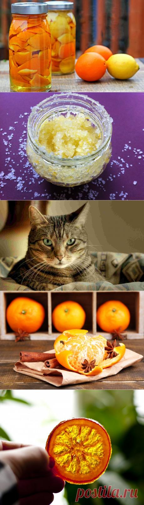 8 необычных способов использования апельсиновой цедры — Полезные советы