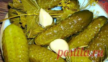 Хрустящие огурчики — очень необычный рецепт приготовления! — В РИТМІ ЖИТТЯ