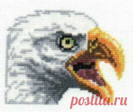 Bald Eagle counted cross-stitch chart   Etsy