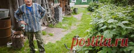 Переезд из города в деревню: с чего начать? Советы из опыта   Деревенское хозяйство