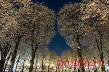 Какая погода будет на Новый год в России: будет ли снег С наступлением первого зимнего месяца россияне задумываются о том, какой будет погода. В преддверии Нового года хочется снега и легкого морозца.