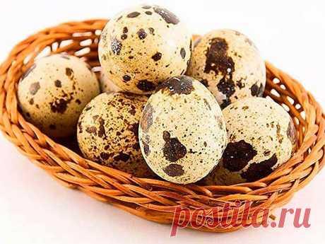 Перепелиные яйца в борьбе с сахарным диабетом | Влада Коновалова | Яндекс Дзен