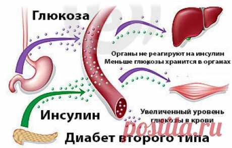 Древний рецепт поможет держать сахар в норме. Или как вылечить сахарный диабет. Подробнее в видео. - Ящик Пандоры Сахарный диабет это не легкая болезнь! Вы должны знать, что для ее лечения, существует множество природных средств, которые могут помочь вам. Многие растения природы характерны противодиабетическими средствами, которые были использованы в качестве натурального средства от диабета на протяжении веков. Сахарный диабет является заболеванием, которое возникает, ког...