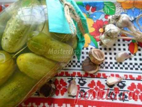 Рецепт маринованных огурцов с чесноком: пошагово с фото