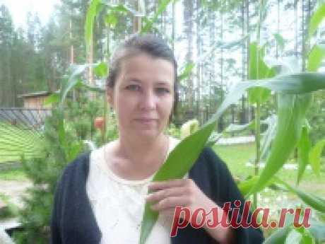 Елена Сугак