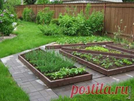 Волшебная подборка фотографий из сети на тему: Декоративный огородик.