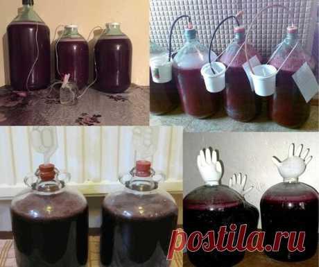 Простой рецепт вина из винограда в домашних условиях