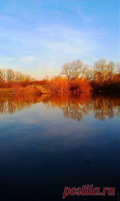 Лучшие фото – Пейзажи/Флора – Community – Google+
