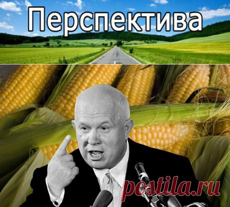 Кукурузная мина: идею Никиты Хрущева скомпрометировали спецслужбы США? | Pravdoiskatel