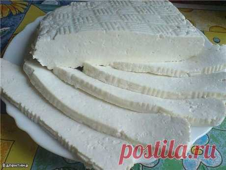 ТОП–5 вкусных домашних сыров