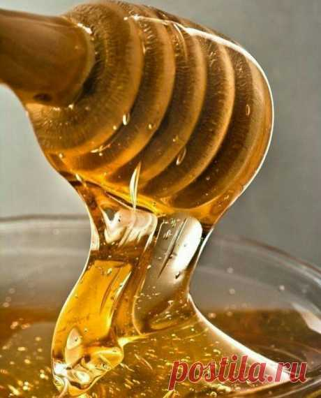 ¡Vencemos las enfermedades por la miel!